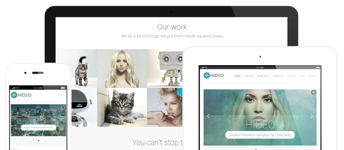 Hideo Premium Website template